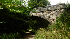 Railway trackbed & farm  overbridge, south of Bakewell   (Monsal Trail)    July  2017 (dave_attrill) Tags: millers dale monsal trail station derby manchester buxton midland disused railway line trackbed footpath bridleway cycle path derbyshire peak district wye valley march 2017 winter closed 1968 barbara castle bakewell coombs road farm bridge july
