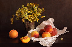 Bitter. Sweet. Alive. (panga_ua) Tags: helichrysumarenarium peaches flowers floral fruits yellow crumpledpaper metallicmug lighteffect darkness chiaroscuro bitter sweet woodentabletop paintedbackground imagination spectacular poetic creation artwork art artistic arrangement composition stilllife bodegon naturamorta naturemorte tabletop sharpfocus availablelight canon artphotography artisticphotography presentation nataliepanga ukraine rivne natalie panga натальяпанга