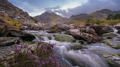Flow.... (Einir Wyn Leigh) Tags: landscape water mountains sceney amazing summe foliage flora heather valley natue natual beauty wales britain uk clouds scenery coloful cham love nikon