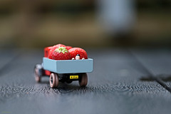 Heavy load... (eleni m) Tags: food fruit strawberries truck car toy toycar outdoor dof doll tintin wheels red licenseplate macro