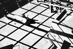 Grid (elgunto) Tags: pattern grid shadows light highcontrast people museum confluences lyon architecture windows blackwhite bw sonya7 sonyfe55mm18
