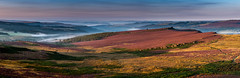 View South from Higger Tor (Peter Quinn1) Tags: overowlertor derbyshire heather derwentvalley burbagevalley burbagerocks higgertor latesummer earlymorning mist panorama