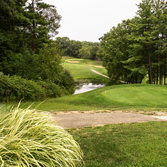 Challenging Shot (SteveFrazierPhotography.com) Tags: wiu westernillinoisuniversity golfcourse harrymussatto golfing sport fairway green pin flag waterhazard pond lake trees campus college frontnine scene scenery landscape beautiful macomb illinois mcdonoughcounty il usa america outdoor outside tee rough sandtrap kenkillian coursearchitect
