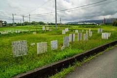 Territorial dispute. (Yasuyuki Oomagari) Tags: claim field board country handwritten japan nikon zeiss distagont2821 trouble green