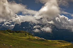 A Farm in front of the mighty Eiger.With admiration to   Ueli Steck (4 October 1976 – 30 April 2017 )No, 8542. (Izakigur) Tags: uelisteck berneroberland bern berna switzerland svizzera lasuisse lepetitprince thelittleprince ilpiccoloprincipe helvetia liberty izakigur flickr feel europe europa dieschweiz ch musictomyeyes nikkor nikon suiza suisse suisia schweiz suizo swiss سويسرا laventuresuisse myswitzerland landscape alps alpes alpen schwyz suïssa eiger d700 nikond700 nikkor2470f28 bussalp