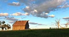 Washington County Kansas Barn (pam's pics-) Tags: ks kansas midwest us usa america washingtonkansas washingtoncounty iphone7 barn rural sunset farm pamspics pammorris cameraphone appleiphone