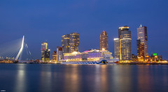 24/08/2017 | Rotterdam (SB-2013) Tags: aida prima city rotterdam cruise ship vessel maas nieuwe kop van zuid erasmusbrug hef de montevideo blue hour blaue stunde blauwe uurtje high end photography skills ships holiday visit terminal