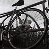 Leather (Yosh the Fishhead) Tags: rollei rolleiflex rolleiflexautomat rolleiflexautomatmx carlzeiss carlzeissjena carlzeissjenatessar carlzeissjenatessar75mmf35 tessar dof bokeh film fujifilm fujifilmacros100 acros100 blackwhite bw blackandwhite monochrome bike bicycle wheel tlr neopan tokyo japan 120 120film filmphotography twinlensreflex mediumformat squareformat square 6x6