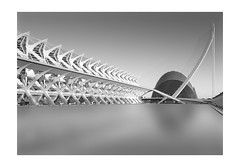 Valencia (vulture labs) Tags: valencia long exposure black white bw fine art workshop arts sciences city calatrava architecture cityofartsandsciences spain mono monochromatic photography nikon d810 zeiss