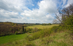 Spring in the Chilterns (Miche & Jon Rousell) Tags: beach chiltern chalk trees spring blue clouds
