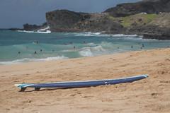 J68A6851-2 (patriciacorsiatto) Tags: hawaii2017 at beach