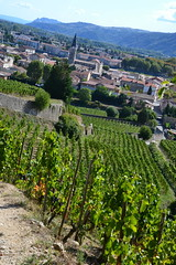 Côte-du-Rhône vineyards (Jeanne Menjoulet) Tags: ardèche côtedurhône vineyards tain lhermitage vignoble vin vignes clocher