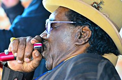 Big George Brock at the 2017 Cat Head Mini-Fest (forestforthetress) Tags: biggeorgebrock blues bluesmusic music musician man face people outdoor color omot nikon harmonica instrument clarksdale mississippi gig concert festival stage