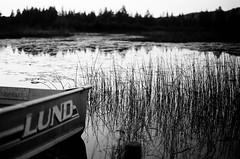 Edit -1-18 (Dane Van) Tags: minolta xg1 ccr canadacreekranch atlantamichigan puremichigan shootfilm 35mm kodaktrix horse head lake horseheadlake