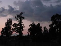 Evening Cemetery. Taken by WR (kachigarasu) Tags: clouds cloud 雲 wielkopolska ポーランド カリシュ ヴィエルコポルスカ sky 空 evening 夕方 風景 木 trees landscape tree kalisz 夕暮れ 日没 sunset 夕焼け シルエット silhouette eveningsky 見上げる poland cemetery 霊園 墓地 墓 共同墓地