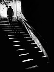 Tall stories (Mark Fearnley Photography) Tags: bw asia tokyo japan stairs silhouette iphone6 iphone noir monochrome streetart streetphotography street blackandwhite fineartphotography fineart art bnw