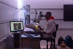 Cradle of Humankind Lab (naturalturn) Tags: man fossil lab laboratory cradleofhumankind gauteng southafrica image:rating=5 image:id=201940