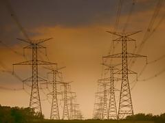 Electric Pylons, Durham Region, Ontario, Canada (duaneschermerhorn) Tags: durham power electricity pylons pylon wires cables sky gold golden design symmetry