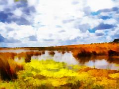 Alentejo | Алентежу (António José Rocha) Tags: portugal alentejo oriola albufeira alvito barragemdealvito água pântano vegetação cores nuvens beleza serenidade