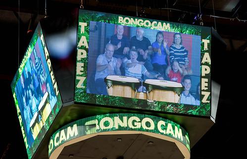 Bongo Cam - ©ChristelleGouttefarde