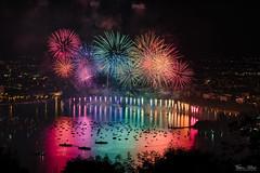 Rainbow of joy (Frédéric Pactat) Tags: nikon d750 nikkor fx 85mm 85 afs f14 d 750 f 14 fireworks feu dartifice night nightshot lowlight annecy fete du lac lake low light colors catchycolors rainbow arcenciel arc en ciel