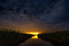 DSC05974 (Adrian Mitu) Tags: deltadunariidanubenikonisti delta dunarii danube romania nikon nature idyllic scenic sun sunset sky clouds reflection