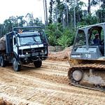 Logging truck thumbnail
