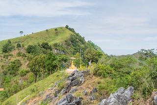 doi pha tang - thailande 20