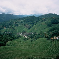 "Ancient rice terraces, Guixin province, China (Xsbmrnr (Please read profile before ""following"") Tags: china chinaimages mamiya6 mediumformat mamiya rice terraces provia colour colourfilm colourreversal slide travel"