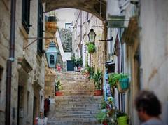 stairway to heavan (stellagrimsdale) Tags: alley alleyway lantens dubrovinik city stairway perspective plants lights stone