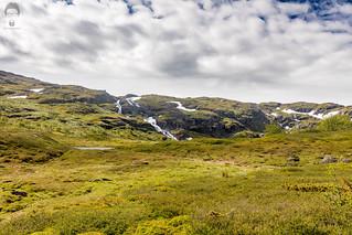 Norway mimicking Iceland