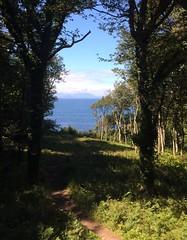 Isle of Arran vistas ❤ (markshephard800) Tags: scotland wood seascape summer ayrshire path landscape trees woods arran ayr sea