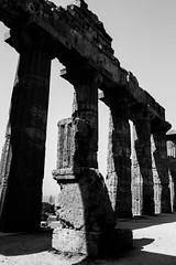IMG_8242 (SalvoGulisanoFotografo) Tags: selinunte sicily greektemple