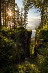 Split (Ron Jansen - EyeSeeLight Photography) Tags: mørkgonga steinsfjord tyrifjord buskerud norway summer green view steep split crack gorge sun tree trees selfie person scale high depth light sunset sunburst nikond810 nikonafsnikkor1424mmf28ged cpl haida filter