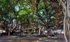 Historic Lahaina (tour.geek) Tags: maui hawaii lahaina kihei wailea hamoa hana kanapali makena islandlife vacationdestination