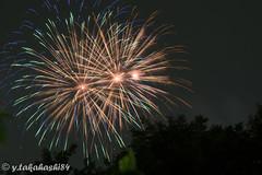 _IMG5934.jpg (y.takahashi84) Tags: hanabi fireworks 花火 さいたま urawa 浦和 東浦和 saitama 日本の夏 summer japan
