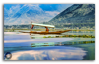 Serene reflections in Dal Lake!