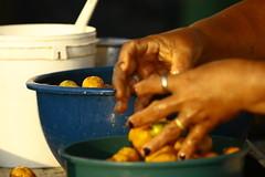 """_MG_6755 (Malu Green!) Tags: malugreen belem para """"belem do para"""" brasil brazil veropeso mercado """"mercado veropeso"""" """"street market"""" peixe fish ervas herbary pessoas gente person people persona garrafas bottles farinha """"estação das docas"""" barco boat porto harbor sunset """"por sol"""" sailor frutas fruit verdura legume detalhes details woman women mulher mujer"""