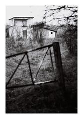 14. Abandoned (kotmariusz) Tags: house abandoned monochrome poland bw blackandwhite analog polska opuszczony budynek monochrom autumn 35mm filmphotography olympusom40 ilfordpan400