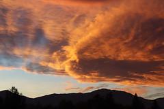 Fairlie - Sunset & Lenticular Clouds (PhilippTea) Tags: fairlie mackenzie sunset alpenglow alpenglühen lenticular clouds norwesterlies ranges mountains southern alps south island canterbury roadtrip vanlife travel