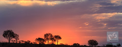 Sunset in the Desert (David de Groot) Tags: brokenhill outback sunset nsw australia au