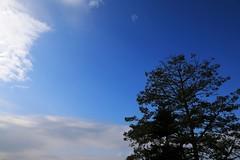 Blue Sky (superzookeeper) Tags: 5dmk4 5dmkiv hk hongkong canoneos5dmarkiv ef2470mmf28liiusm sky bluesky feingoshan eos skyline digital clouds silhouette