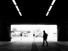 no parking here (René Mollet) Tags: parking man street streetphotography shadow silhouette streetart uni delft blackandwhite bw backlight renémollet urban urbanstreet urbanlife