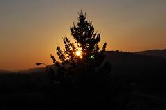 Mountain Sunrise. (dccradio) Tags: bland va virginia blandcounty sunrise sun sunlight morning goodmorning daybreak mountain mountains silhouette tree trees streetlight lightpole lamppost outdoors outside nature scenic natural nikon d40 dslr