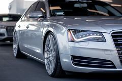Audi A8 x Ace Devotion D718 (ACEALLOYWHEEL/AMF FORGED) Tags: audi a8 devotion acealloy acealloywheel acewheels wheels aftermarketwheels aftermarket