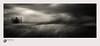 slp17-8615 (andypage7) Tags: northumberland uk unitedkingdom dunstanburgh dunstanburghcastle mono monochrome blackwhite blackandwhite atmospheric dark moody brooding threatening castle tower grasses