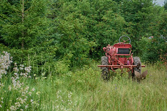 Red Tractor (gabi-h) Tags: vintage tractor farm kingspoint newfoundland gabih wildflowers meadow green summer trees branches grass