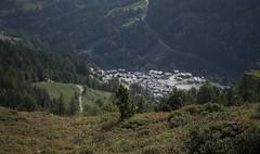 Grimentz (bulbocode909) Tags: valais suisse grimentz bendolla villages montagnes nature forêts arbres vert valdanniviers cabanedesbecsdebosson