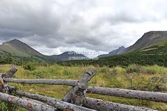 @theUPTOPKID | www.UPTOPKID.com | #ANCHORAGE / #SEWARD, #ALASKA | #PASSPORTPORNSTAR | #LIFEOFUPTOPKID (theuptopkid) Tags: seward alaska2017 day 47 lifeofuptopkid passportpornstar ak anc alaska alaskan alaskaair alaskalife alaskatrip anchorage alaskanlife alaskacruise alaskabound alaskagrown alaskancruise alaskanmalamute wwwuptopkidcom fishing fish glaziers glazier mountains rv camper camping wwwpassportpornstarcom passport porn star uptopkid uptopkidcom theuptopkid theupopkid up top kid