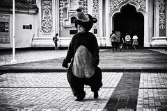 Ведмідь (tagois) Tags: kiev ukraine kyiv київ україна saintsophiacathedral соборсвятоїсофії